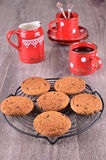Biscuits with chocolate drops Royalty Free Stock Images