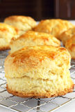 Biscuits cooling Stock Photos