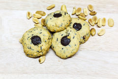 biscuits cuits au four de chocolat de puce frais Photographie stock