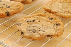 Biscuits cuits au four frais Photographie stock libre de droits