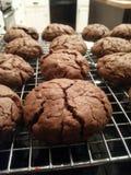 Biscuits cuits au four frais image libre de droits