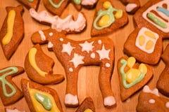 Biscuits décorés colorés de pain d'épice - orignaux de Noël, coeurs, lune, poisson Images libres de droits