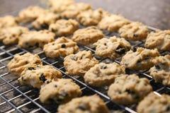 Biscuits d'amande avec des puces de chocolat photos libres de droits