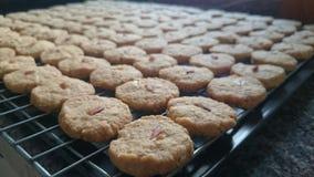 Biscuits d'amande de farine d'avoine Photographie stock libre de droits