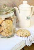 Biscuits d'avoine et de son Photo stock