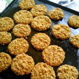 Biscuits d'Oaty Images libres de droits