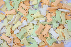 Biscuits d'os de chien Image stock