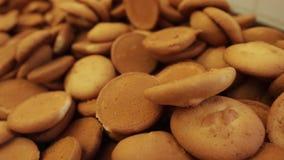 Biscuits dans la boulangerie Biscuits frais cuits au four Biscuits cuits au four dans le four, plan rapproché Production des gâte clips vidéos