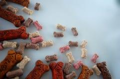 Biscuits de chienchien Photo libre de droits