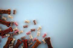Biscuits de chienchien Image stock
