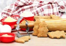 Biscuits de chiens faits maison formés comme des bouches d'incendie Photos libres de droits