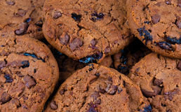 Biscuits de Choclate Photo stock