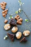Biscuits de chocolat et gâteau de Vienne de sacher Photos stock