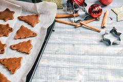 Biscuits de chocolat de pain d'épice de Noël sur la moule images stock