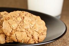 Biscuits de farine d'avoine Images libres de droits