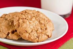 Biscuits de farine d'avoine avec du lait Photographie stock libre de droits