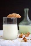 Biscuits de farine d'avoine avec du lait sur un fond noir et blanc Image libre de droits