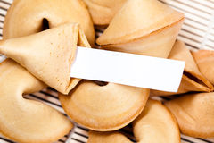 Biscuits de fortune chinois Photo stock