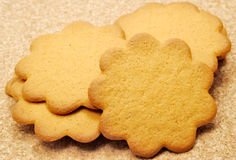 Biscuits de gingembre Image stock