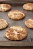Biscuits de griffonnage de ricanement Image libre de droits