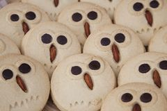 Biscuits de hibou Photographie stock
