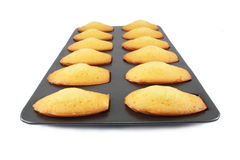 Biscuits de Madeleine Photo stock