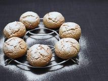 Biscuits de miel Photos libres de droits
