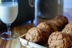 Biscuits de molasse Image libre de droits