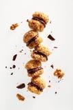 Biscuits de noix de chocolat image stock