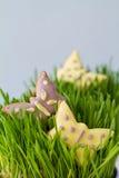 Biscuits de Pâques avec l'herbe Images libres de droits