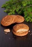 Biscuits de pain d'épice et branches impeccables sur un fond noir Photos stock