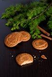 Biscuits de pain d'épice et branches impeccables sur un fond noir Photos libres de droits