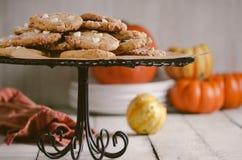 Biscuits de potiron Photographie stock libre de droits