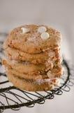 Biscuits de potiron Image stock