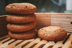 Biscuits de puce Photo libre de droits