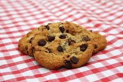 Biscuits de puce de chocolat Photographie stock libre de droits