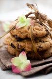 Biscuits de puce de chocolat Images libres de droits
