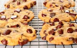 Biscuits de puce de chocolat délicieux Photo libre de droits