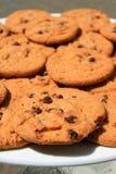 Biscuits de puce de chocolat d'une plaque photo libre de droits