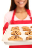 Biscuits de puce de chocolat de traitement au four photo libre de droits