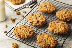 Biscuits de raisin sec faits maison de farine d'avoine Images stock
