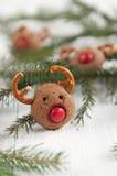 Biscuits de renne de Rudolf de Noël Photographie stock libre de droits