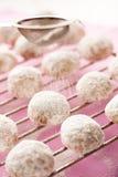 Biscuits de sablé Image stock