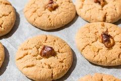 Biscuits de tahini avec la noix Images libres de droits