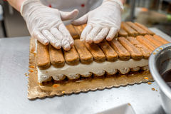 Biscuits de tiramisu image stock
