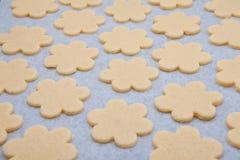 Biscuits de traitement au four à la maison Photographie stock libre de droits