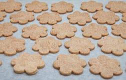 Biscuits de traitement au four à la maison Images stock