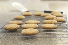 Biscuits de traitement au four images libres de droits