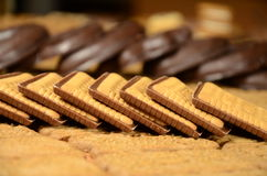 Biscuits. Different bakery foodstuffs. Mix. Biscuits and chocolate cookies Stock Image