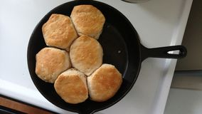 Biscuits for dinner Royalty Free Stock Photo